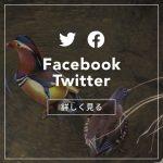 日本野鳥の会ひょうご公式Facebook,Twitter